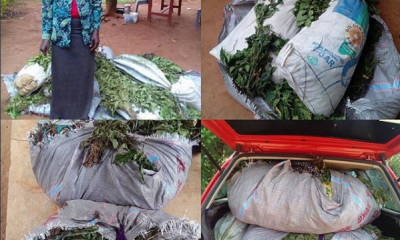 50 Year Old Woman Arrested With 40kg Cannabis Hidden In Vegetables