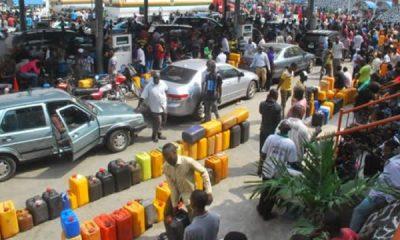 Fuel scarcity: Stop Punishing Nigerians, PDP Begs Buhari