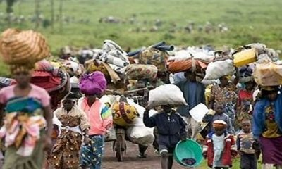 There Are 10,000 Cameroonian Refugees In Nigeria - UN