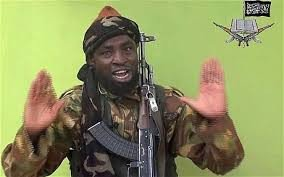 Nigerian Army Places N3M Bounty On Boko Haram Leader, Abubakar Shekau