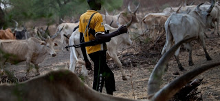 Herdsmen Allegedly Invade Benue Community, Order Villagers To Vacate Homes