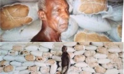 NDLEA Uncovers 525 Bags Of weed Inside Ceiling, Arrests 64-yr-Old Man