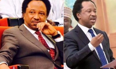 Prisons Will Be Filled With Bloggers If Hate Speech Bill Is Passed – Shehu Sani