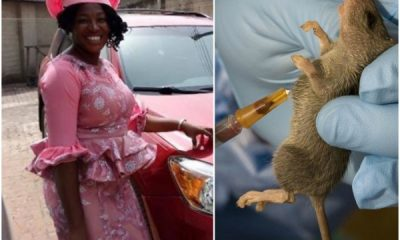 Lassa Fever Kills Doctor, A Month After Starting Her Residency In Abia State