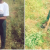 Unemployed Graduate Narrates How Farming Saved Her From killing Herself