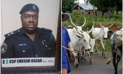Policeman Killed While Trying To Avoid Cattle From Herdsmen On Expressway