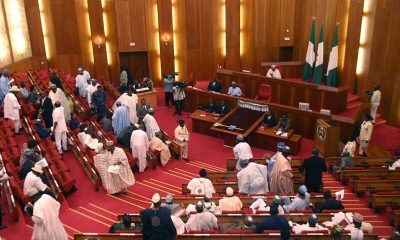 Senate Decries Performance Of N1.5tr Social Investment Scheme