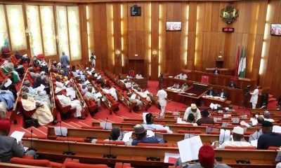 13 Nigerian Senators Face Corruption Probe, Trial
