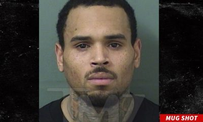 Chris Brown Reportedly Arrested After His Florida Concert