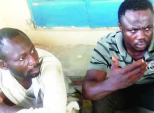 ''I Resorted To Stealing Because People No Longer Build Houses'': Bricklayer
