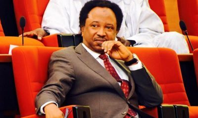 I Can't Be Part Of Any Plot To Impeach Saraki – Shehu Sani