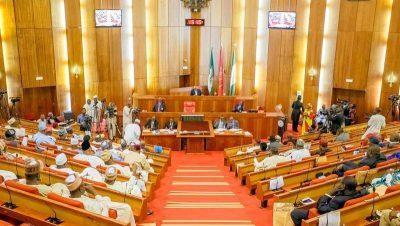 Senate Seeks Loans For Herders To Establish Ranches