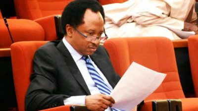Shehu Sani Resigns From APC In Protest