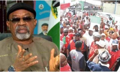 Nigerian Workers Should Be Clapping For Us – Ngige