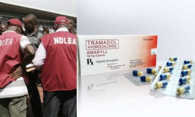 NDLEA Intercepts 581 Million Tramadol Tablets In 2 Days