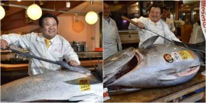 Tuna Fish Sells For N1.1Billion In Japan's New Year Tuna Auction