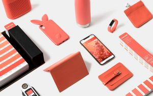 Pantone's 2019 Color Of The Year Is 'Living Coral'(Look)