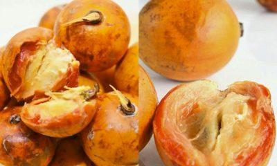 Agbalumo Lowers Blood Sugar, Cholesterol – Expert