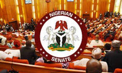 Senate Passes Police Reform Bill, 2019