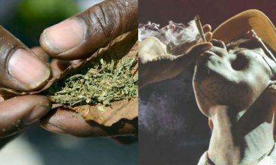 Nigeria Tops List Of Highest Marijuana Consuming Countries In Africa