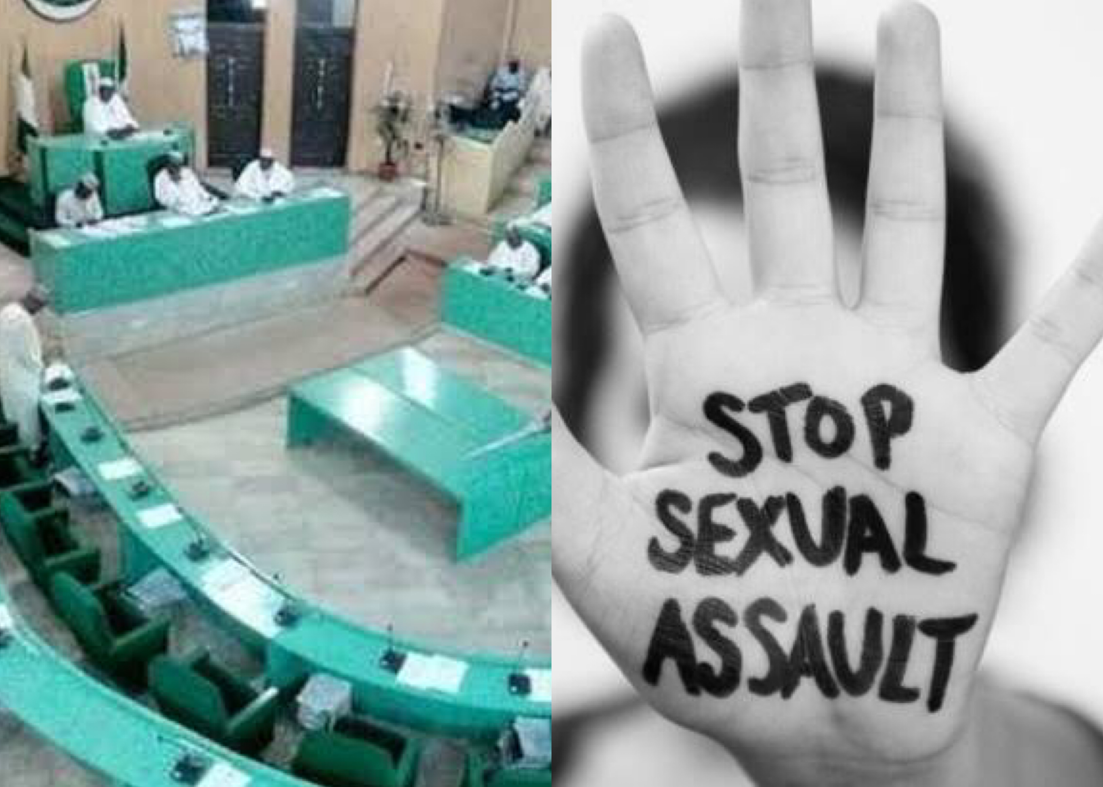 Kano Assembly Unanimously Adopt Castration As Punishment For Rape