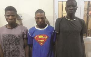 Brothers Seeking Money Ritual Rob Grandpa, Kill Wife Over N550,000